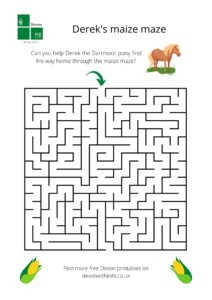 Derek's maize maze. Help our Dartmoor pony find his way through this maze activity sheet