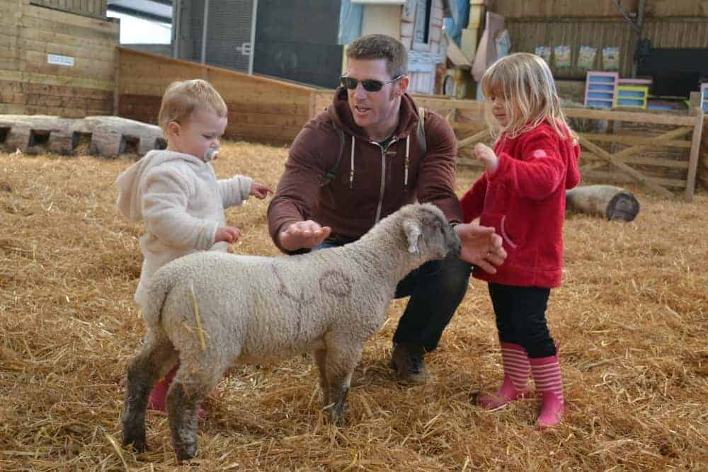 Family petting lamb at The World of Country Life in Exmouth