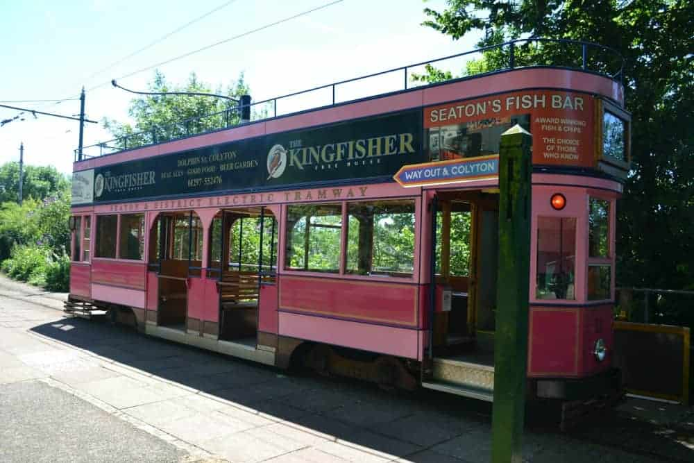 Pink tram on Seaton Tramway in East Devon