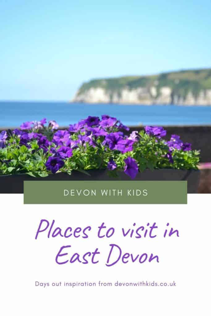 Whether you're want a bracing walk on the Jurassic coast, to hand-feed deer or see historic sights there's plenty of great places to visit in East Devon. Here are some of the best days out for families in East Devon from Exeter to Axminster #Devon #daysout #thingstodo #travel #holiday #UK #England #EastDevon #Sidmouth #Seaton #Exeter #familytravel #travelblog #Devonwithkids #attraction #family #todo