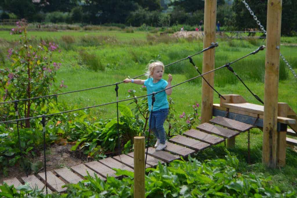Child on wobbly bridge at the Bear Trail in East Devon