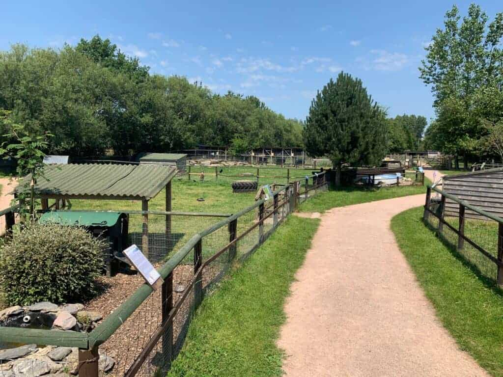 View of animal pens at Totnes Rare Breeds Farm - a day out in South Devon, England