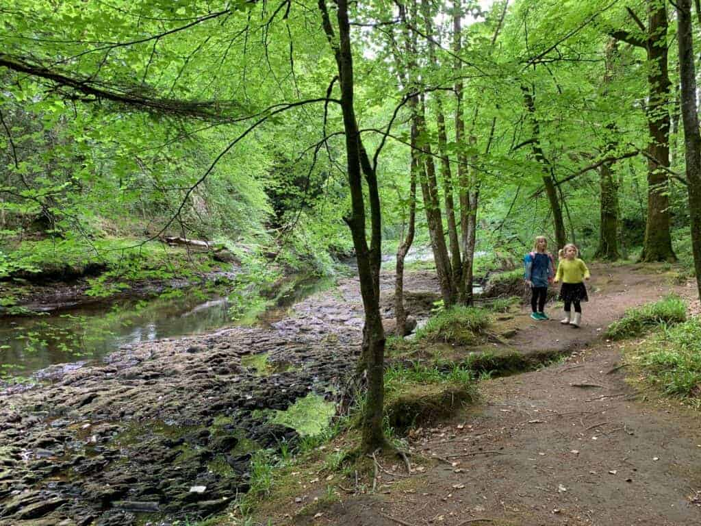 Kids walking by the River Dart in Hembury Woods near Buckfastleigh, Devon