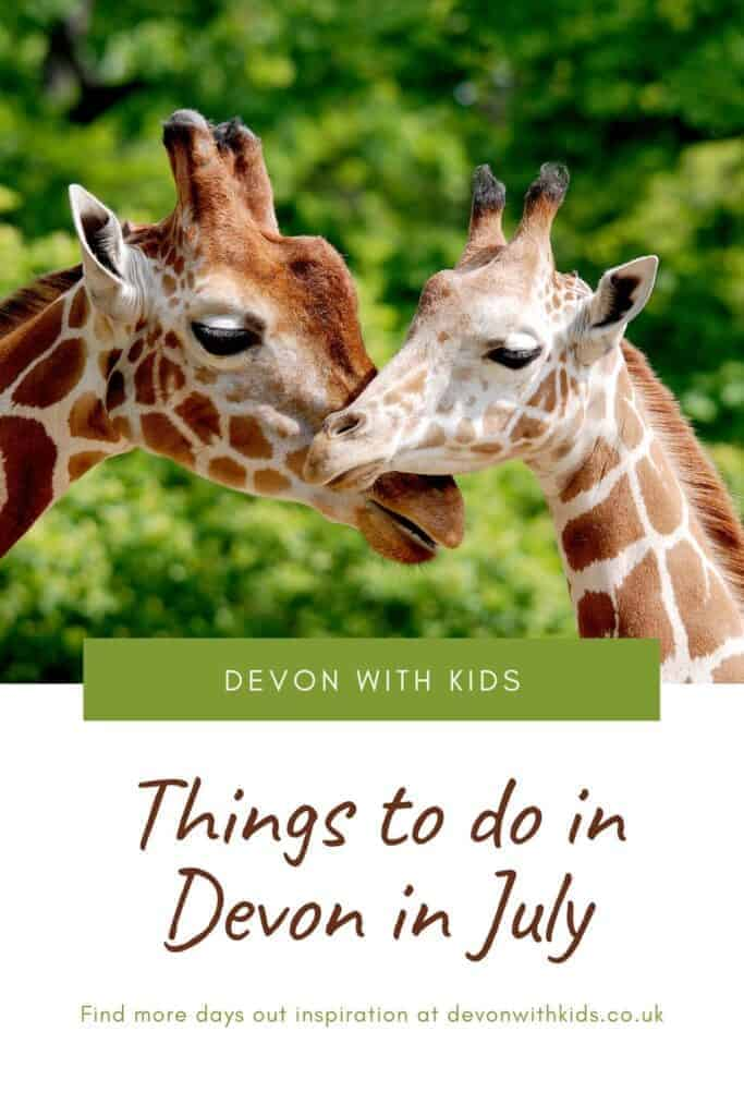 July is a brilliant month to visit Devon with family even if things are a little different right now. Here's what's open and some recommended places to visit in Devon in July 2020 including zoosz, animal parks, theme parks, country parks and beaches #Devon #England #UK #attractions #family #dayout #thingstodo #places #visit #kids #devonwithkids #beaches