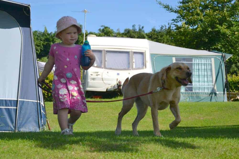 Child and dog at campsite