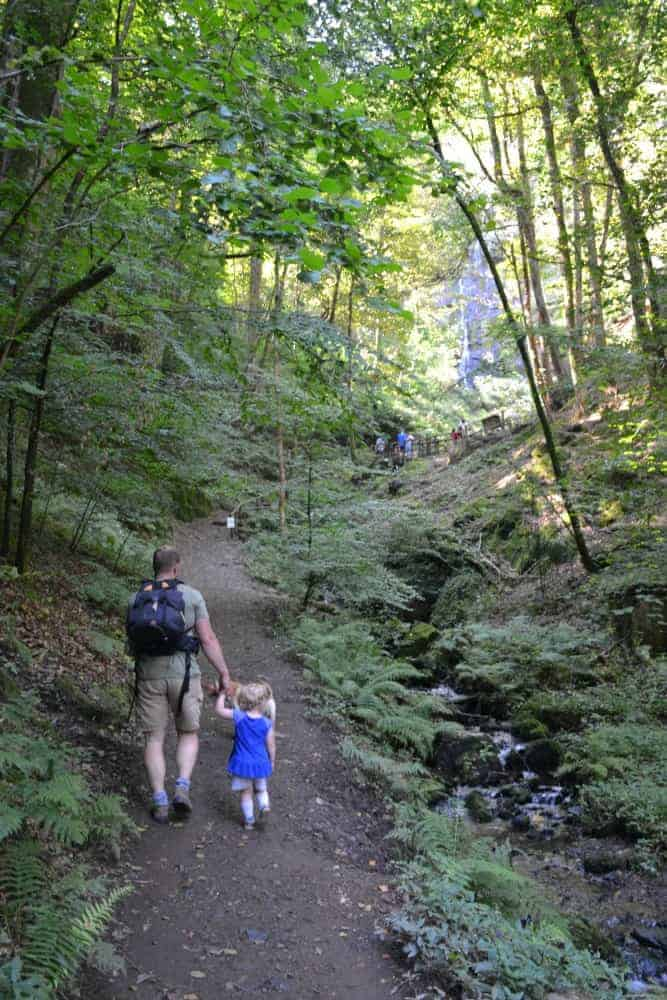 Family walking through forest at Canonteign Falls  - one of the things to do in Dartmoor with kids