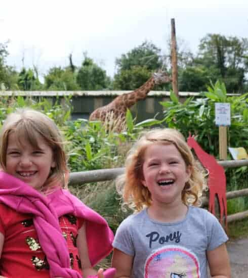 Children with giraffe at Paignton Zoo in South Devon