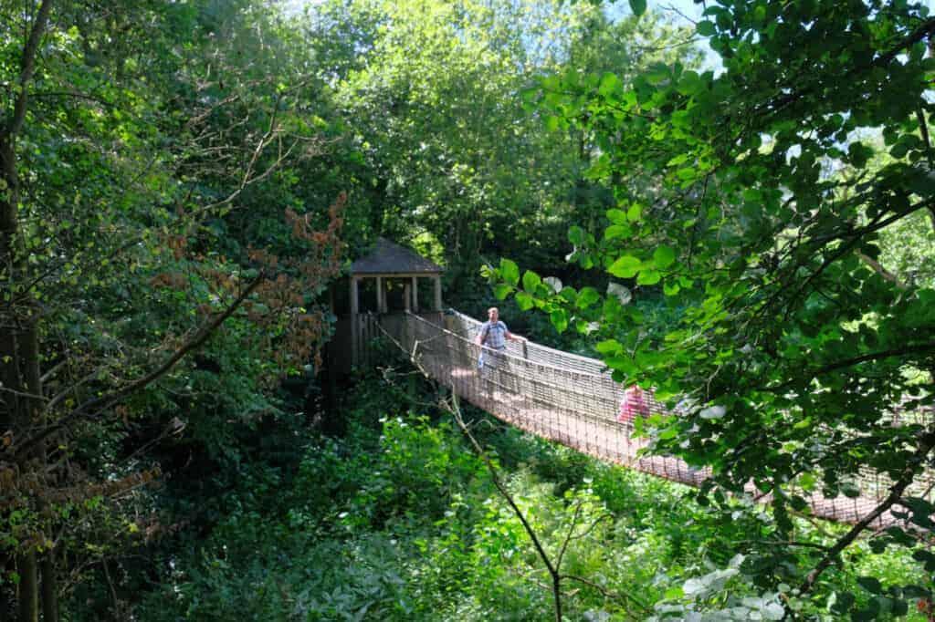 Wobbling bridge in Lemur Wood at Paignton Zoo