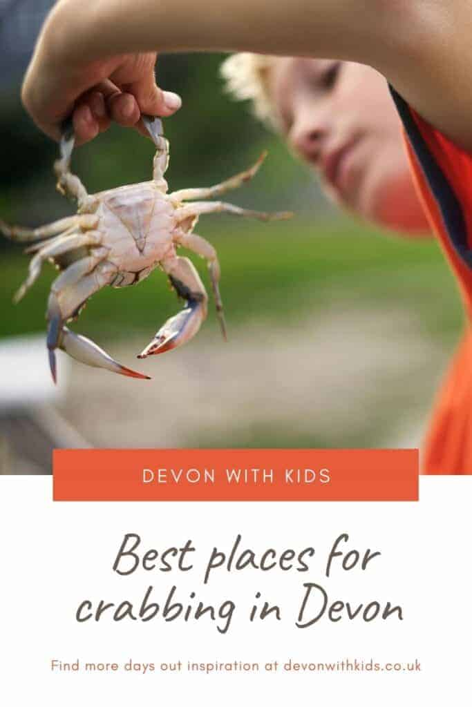 Looking for the perfect spot to go crabbing in Devon? Here's our top tips for where to drop a line in the North, East and South of the county #Devon #UK #crab #crabbing #England #best #places #visit #travel #fun #familyfriendly #DevonwithKids