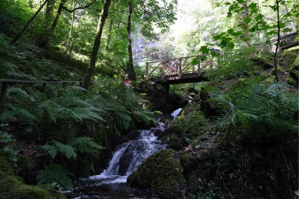 Bridge over part of the waterfalls