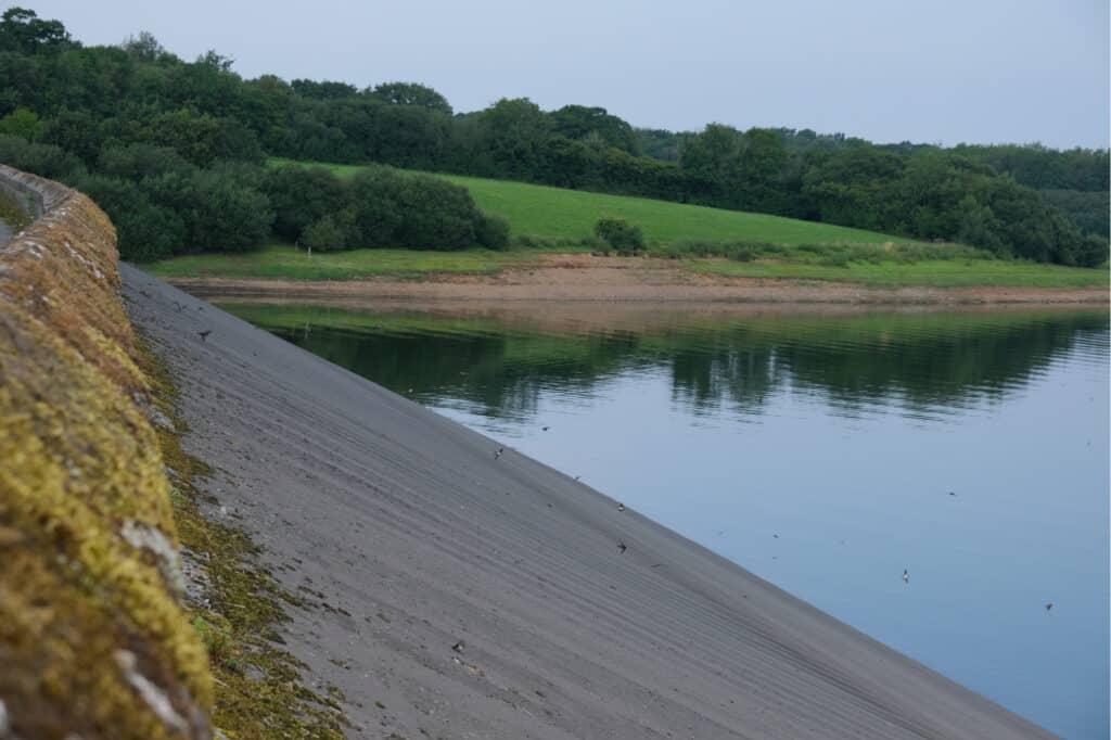 Birds flying against side of dam at Roadford Reservior in West Devon