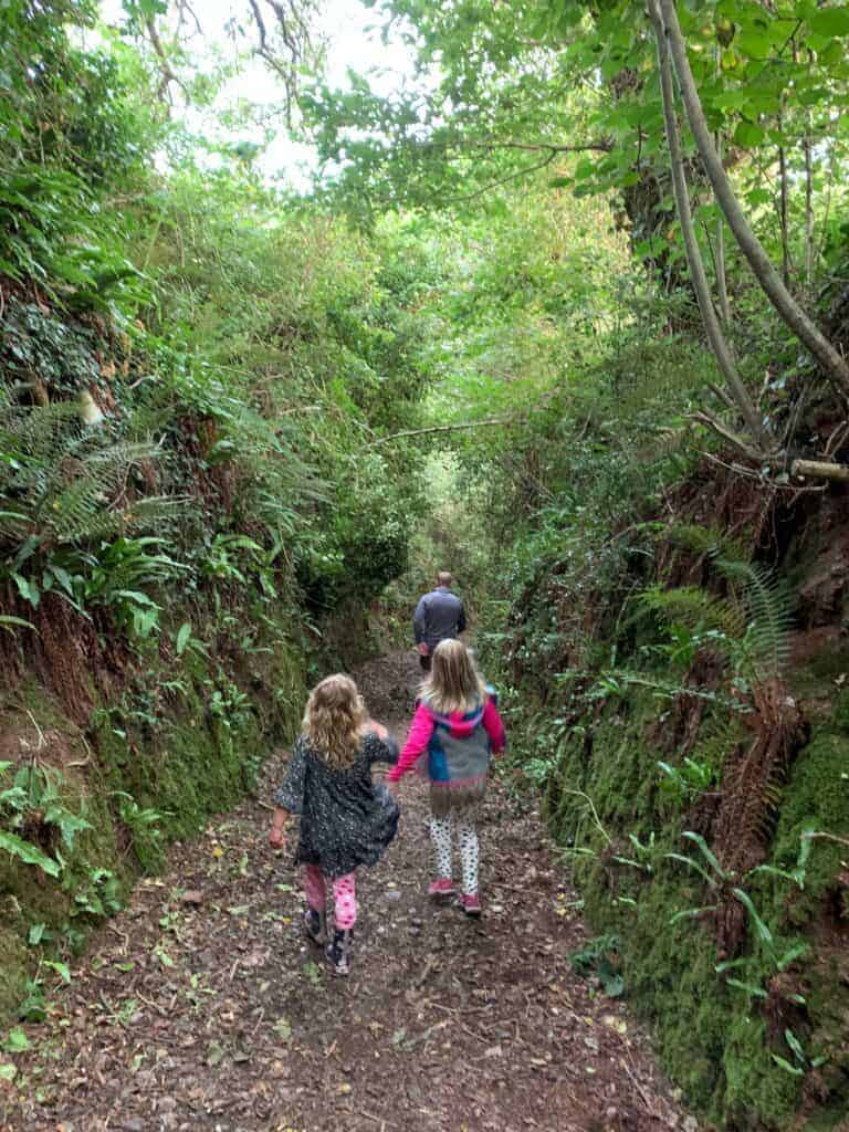Family walking down a fern lined gully