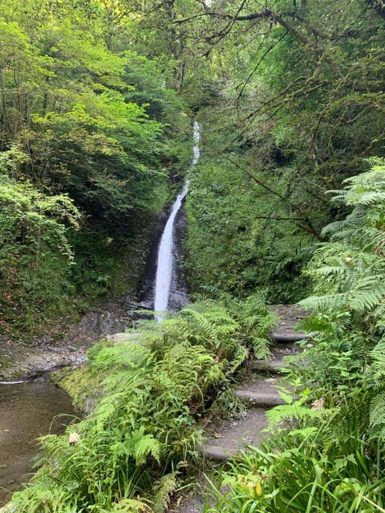 Whitelady Falls waterfall surrounded by greenery