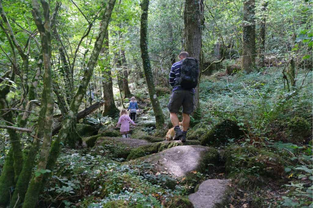 Family walking over boulders on path down Becky Falls