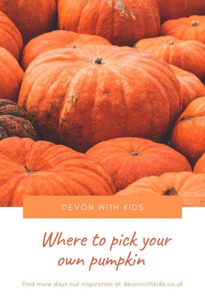 Get your spook on at these events happening this Halloween in Devon including where to pick a pumpkin and find treats not tricks in 2020 #familyfun #October #autumn #Devon #England #Fall #UK #Halloween #pumpkin #pick #patch #events #thingstodo #DevonwithKids