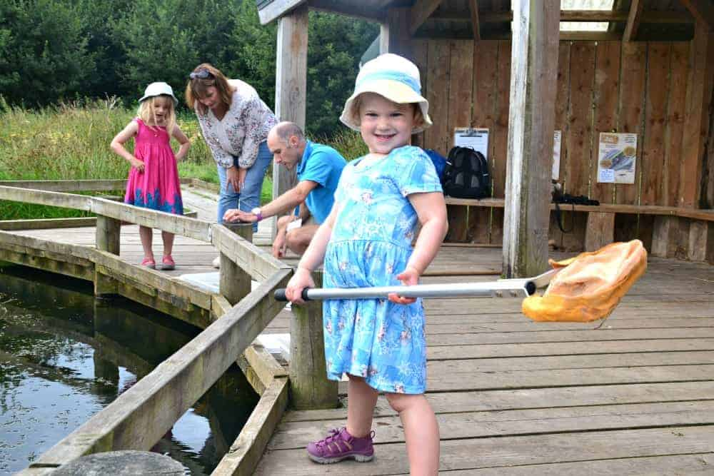 Girl pond dipping at Seaton Wetlands