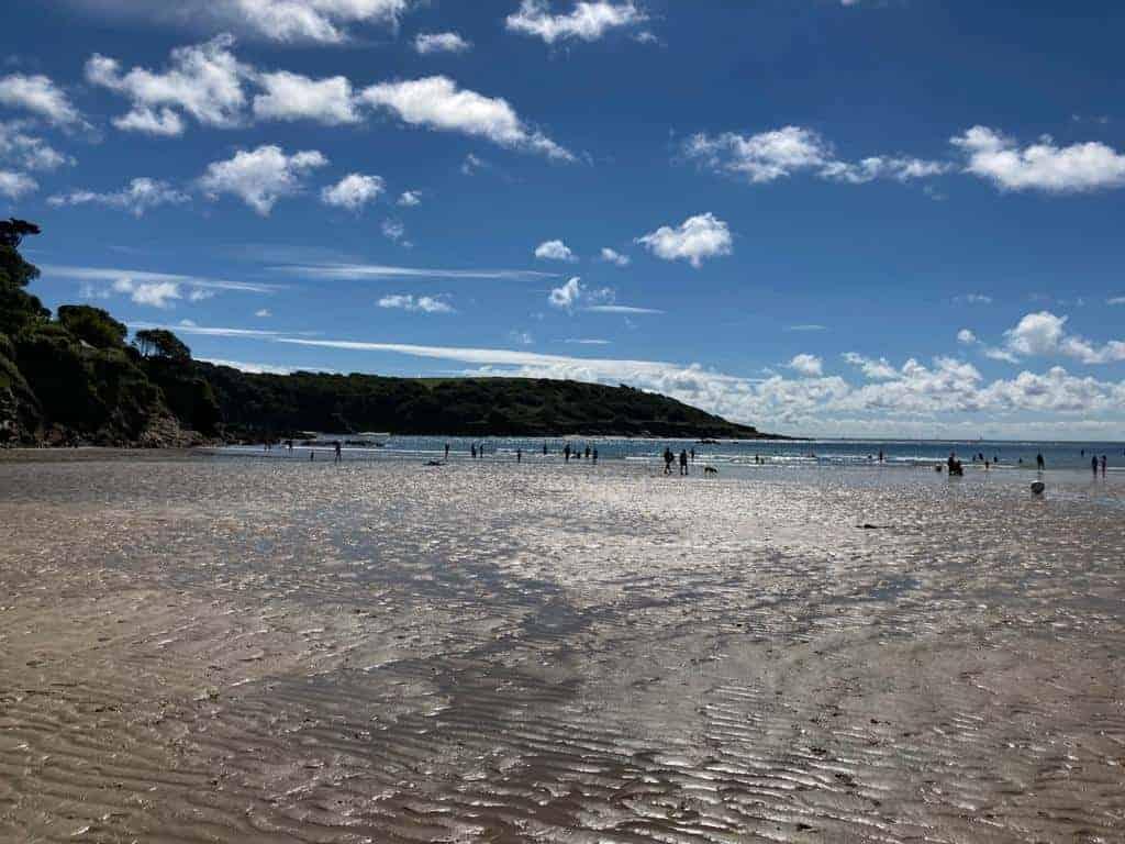 North Sands Beach in Salcombe Devon