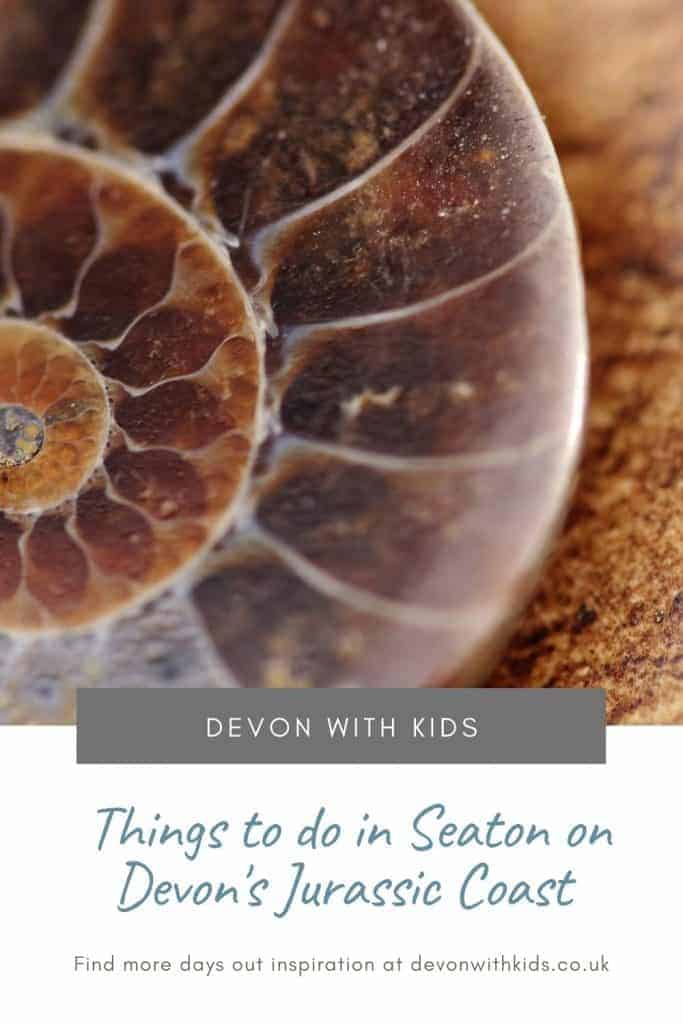 Discover the history, wildlife and beauty of Seaton, Devon with our recommended things to do with kids around this Jurassic Coast town #Seaton #EastDevon #Jurassic #WorldHeritageSite #travel #familytravel #guide #destination #England #holiday #daysout #UK #Devonwithkids