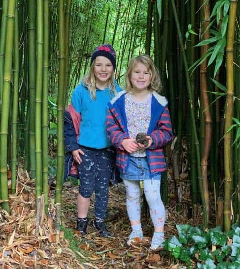 Kids in bamboo in the Coleton Fishacre gardens