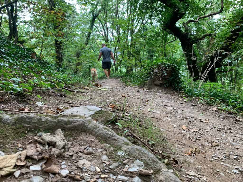 Rocky path to Gallants Bower in Dartmouth