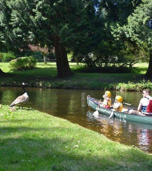 Family canoeing at River Dart Country Park